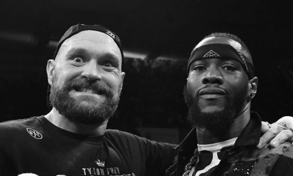 Fury and Wilder